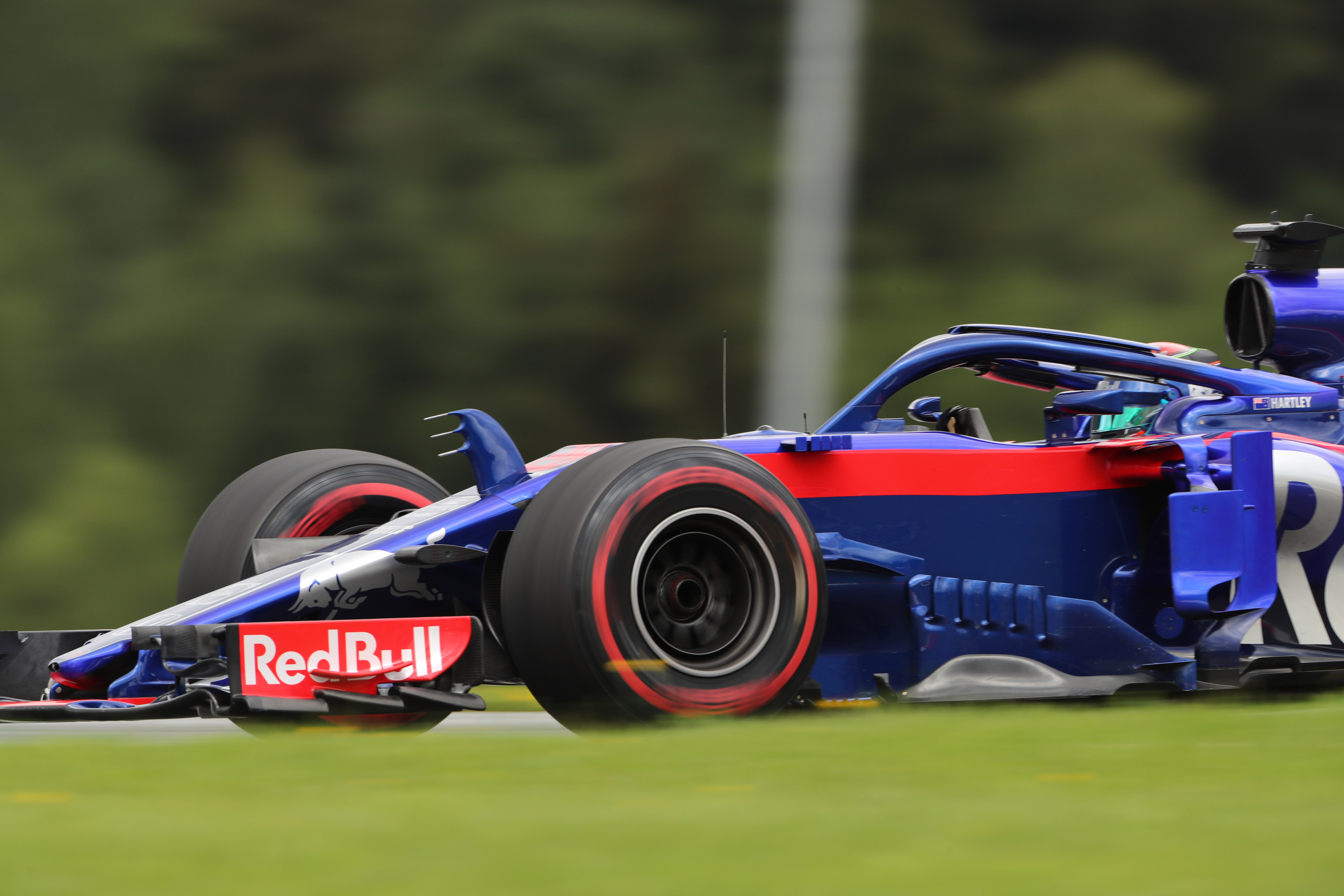 Toro Rosso, STR13, front wing,