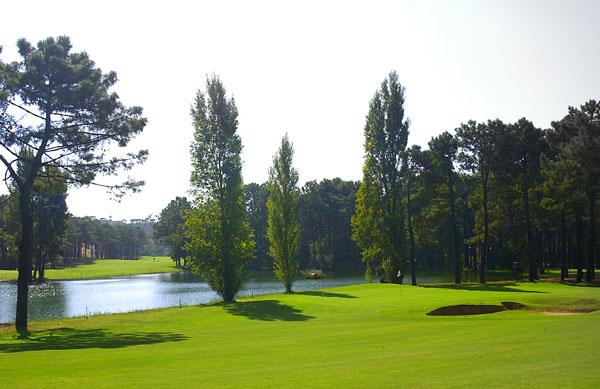 Parkland-style Aroeira