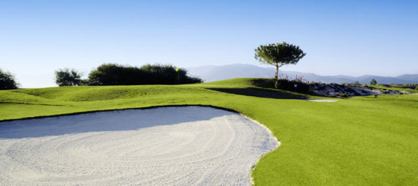 The Troia course is among the coastal dunes