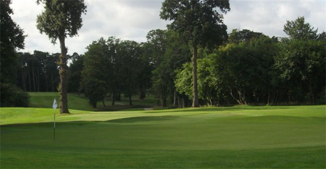 Back of Colt's third green