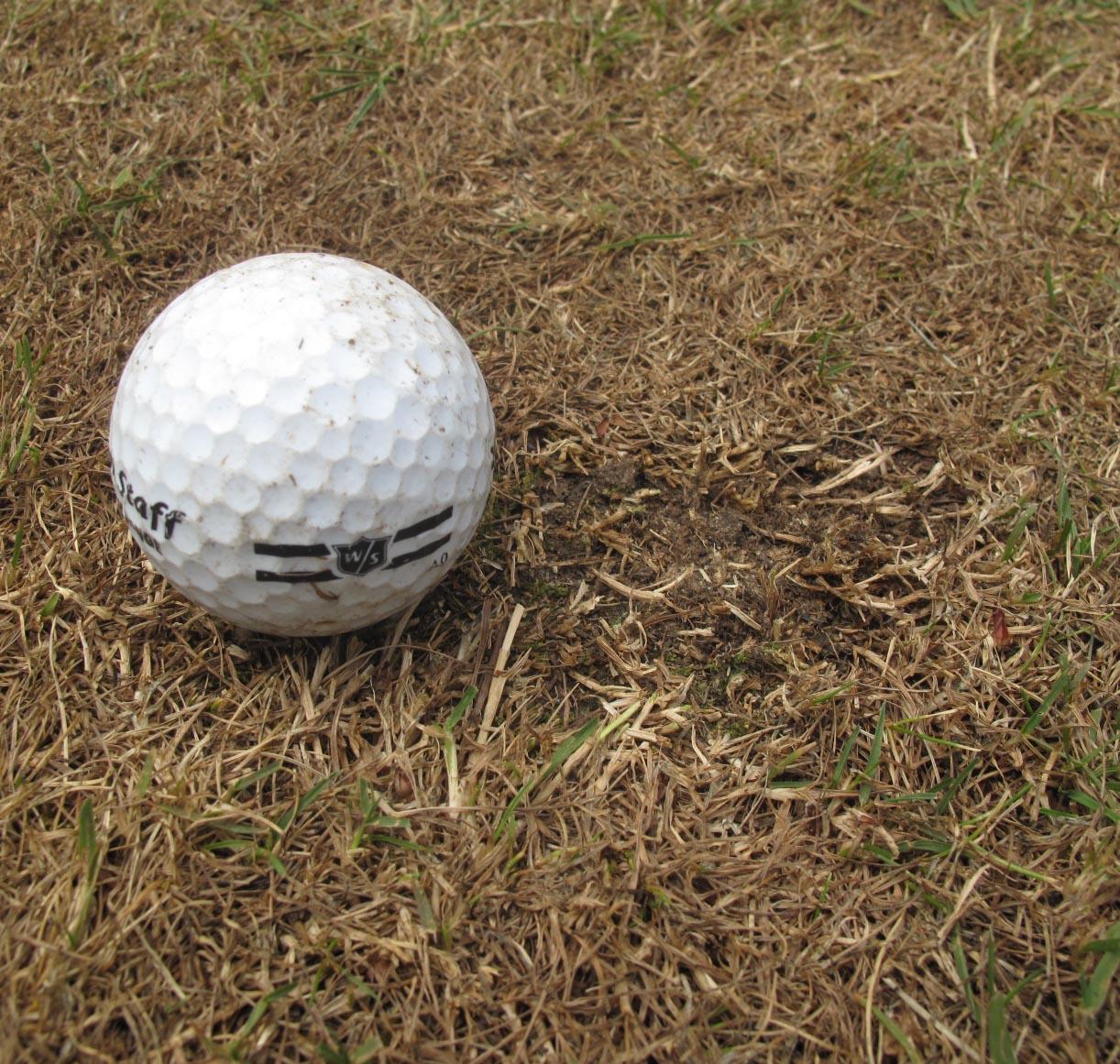 A small divot should follow the ball