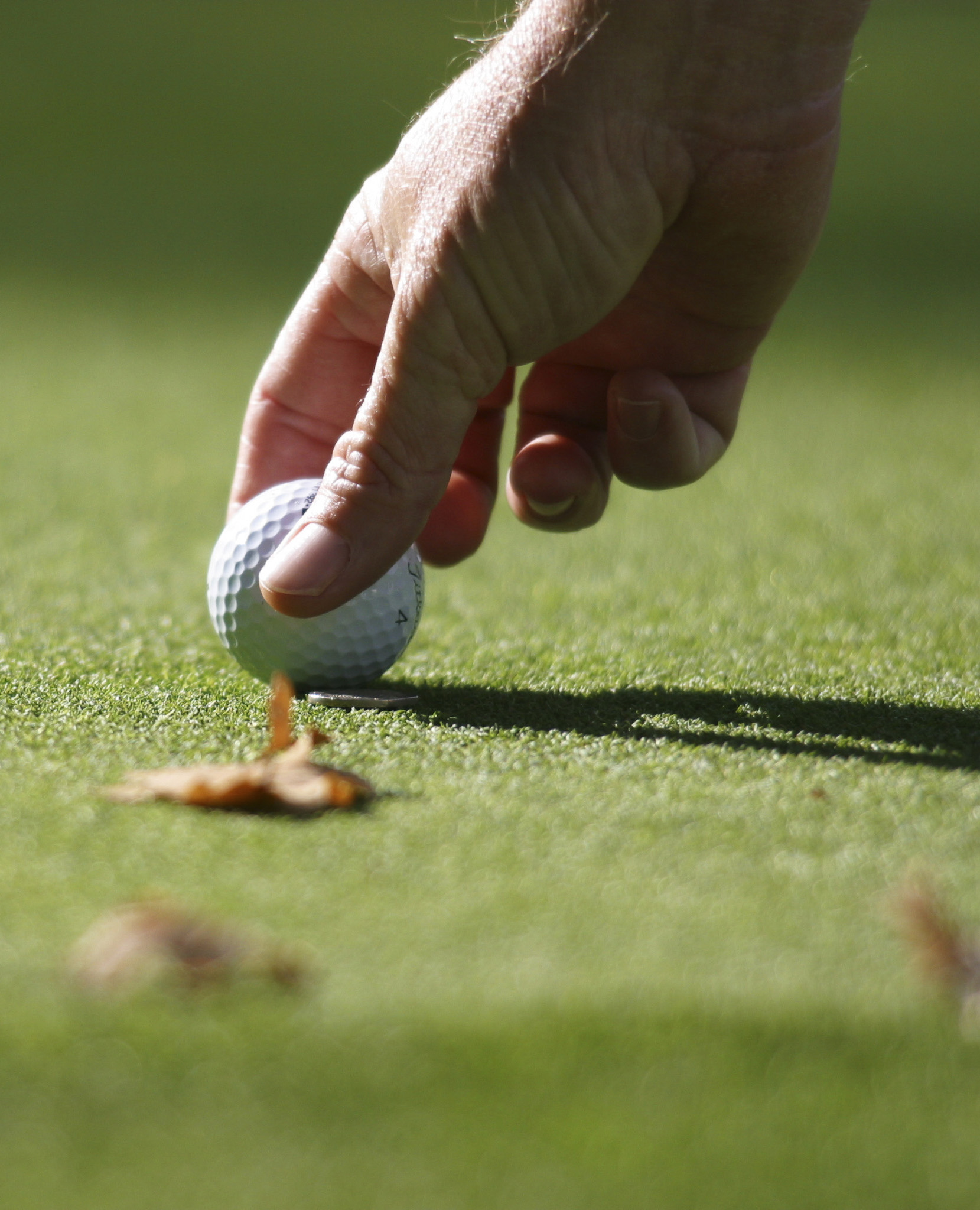 Find out the rules for marking your ball and loose impediments