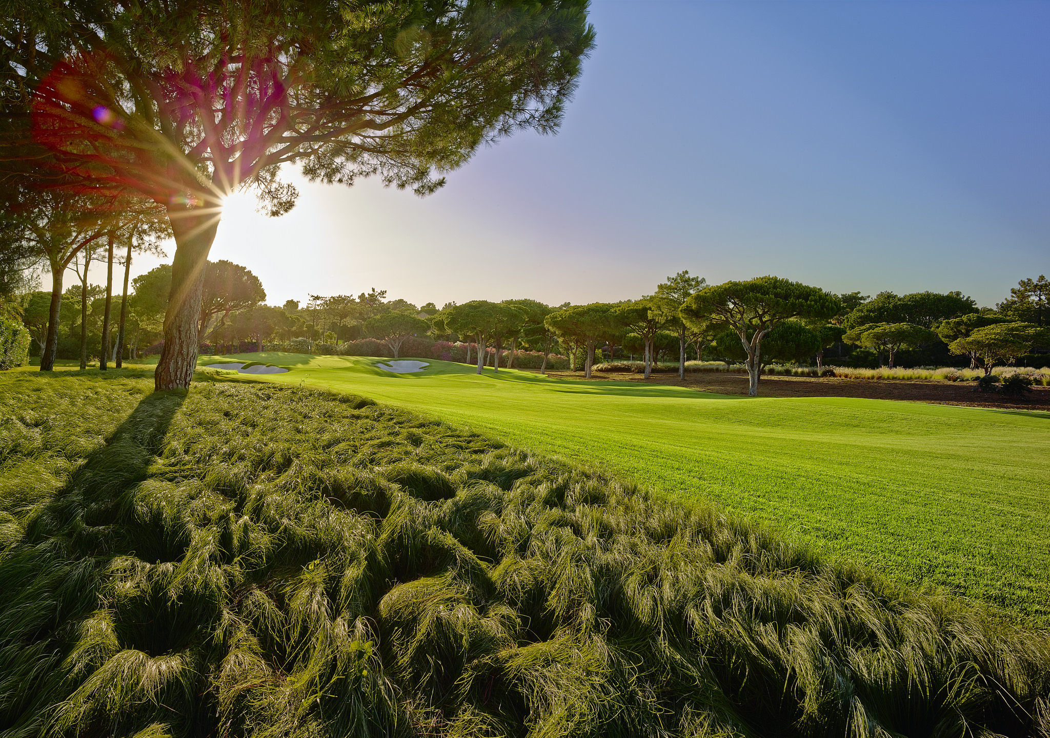 The club has spent €9.6m on improving the course