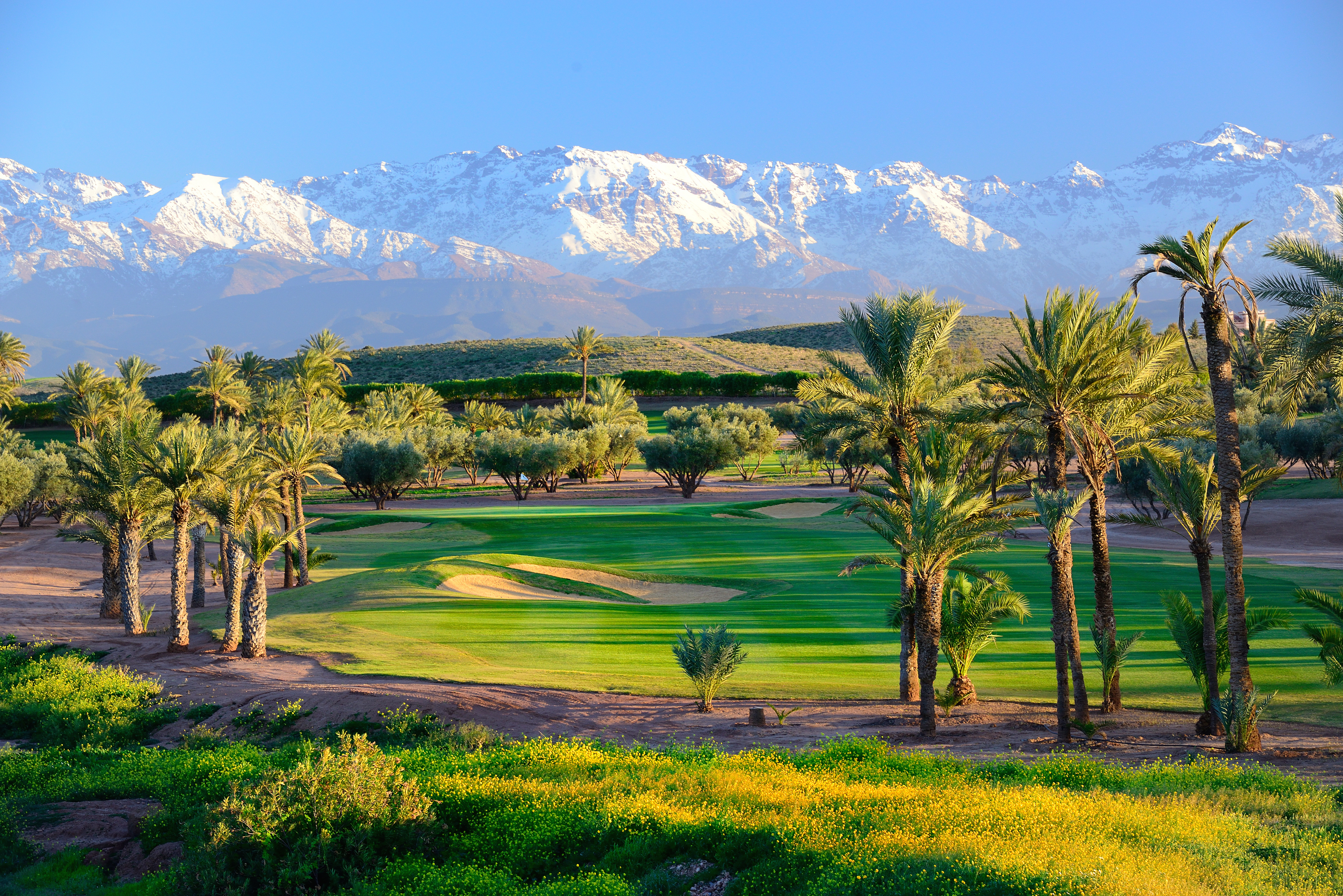Assoufid tracks the natural folds of the rolling foothills of the Atlas Mountains