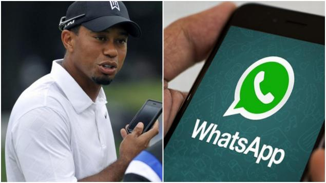 PGA Tour WhatsApp group chat reacts to Tiger Woods' Masters win...