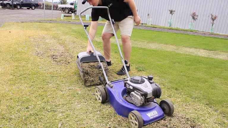 How to get a golf course lawn: a step-by-step guide