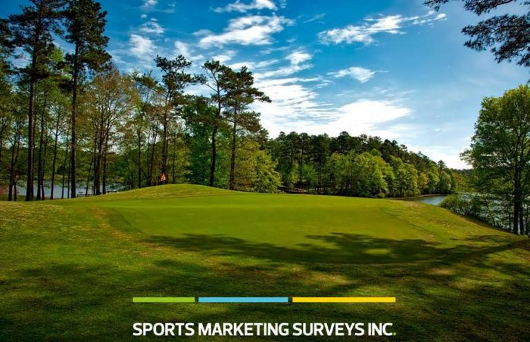 Sports Marketing Surveys