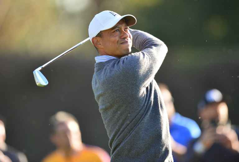 The irons as played by the world's top 20 golfers