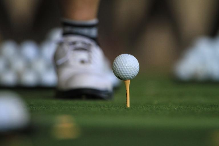 Golf Tees: Plastic or Wooden - which ones do you use on the course?