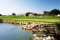Algarve is ready to roll out the 'greens carpet'