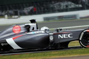 Van der Garde crash curtails test