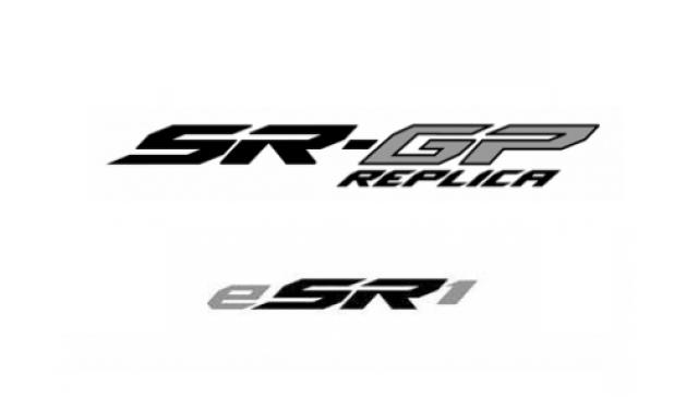 ESR1 logo