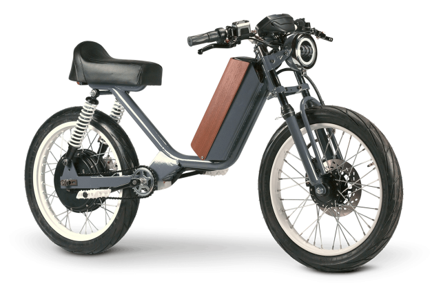 Are these electric bikes or electric cycles?