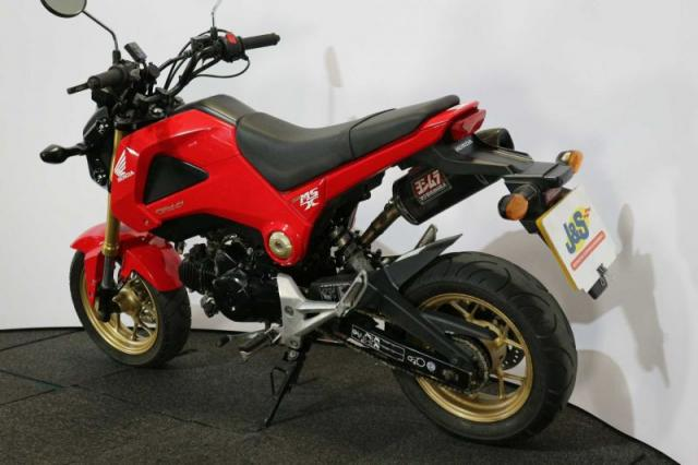 Bike of the day: Honda MSX125