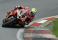 Josh Brookes - Be Wiser PBM Ducati 9