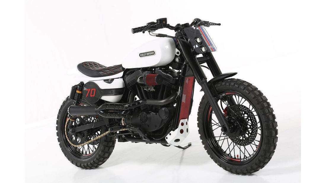 Harley-Davidson Custom Sportster 883