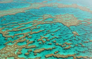 Cairns_Great Barrier Reef_(c)_Beatriz Queiroz