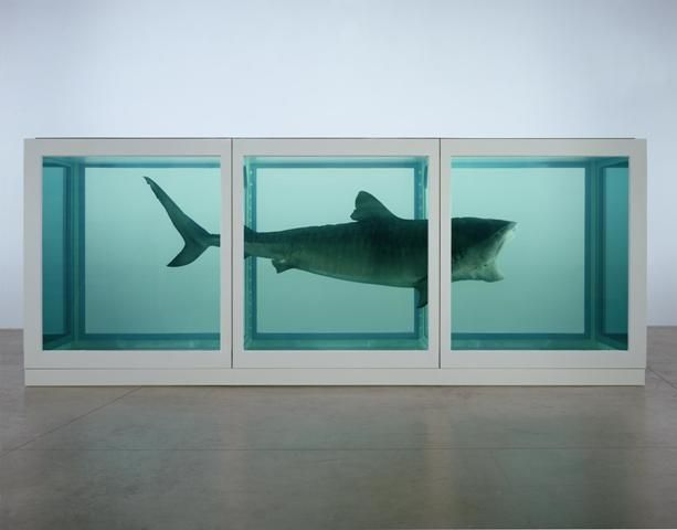 Damien Hirst, The Physical Impossibilité of Death in the Mind of Someone living, 1991