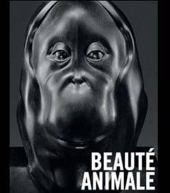Beautés animales - Grand Palais