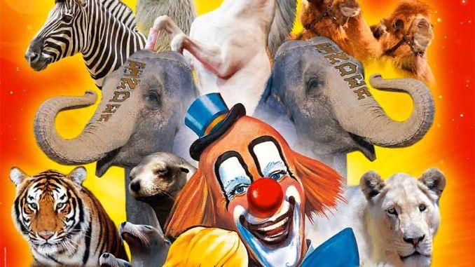 Le Cirque Pinder à Toulon : gagnez vos invitations
