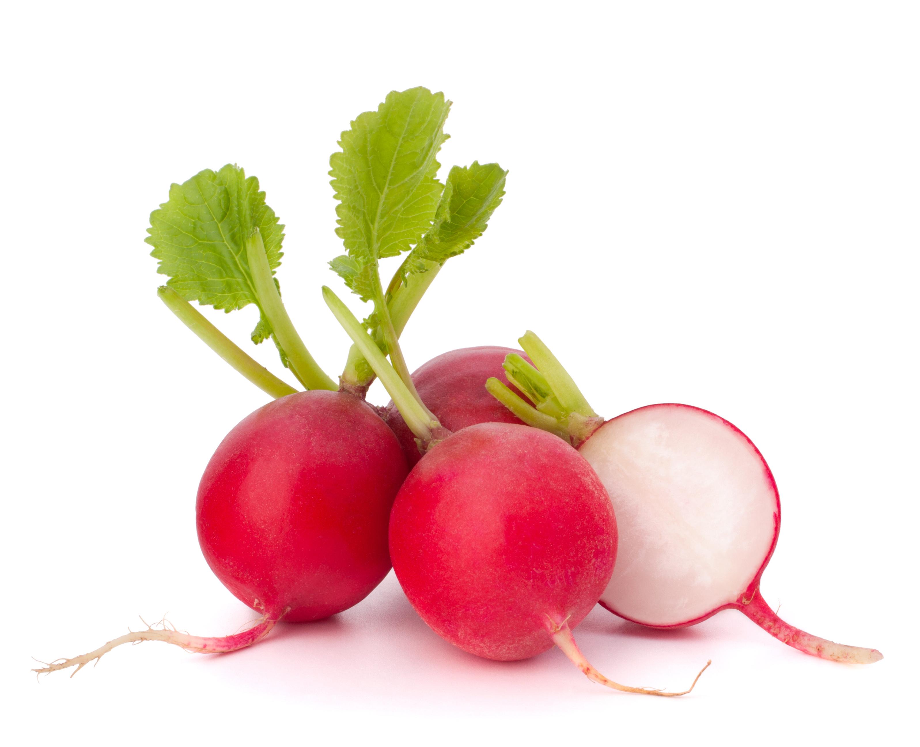 Le radis cuit - Radis rose d hiver de chine ...