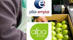 Journée de l'emploi sur France Bleu Cotentin