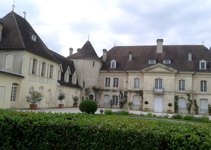 Les viticulteurs du Bordelais au chevet de la vigne : le mildiou et l'oïdium menacent la forte humidité - Pierre Marie Gros - Radio France