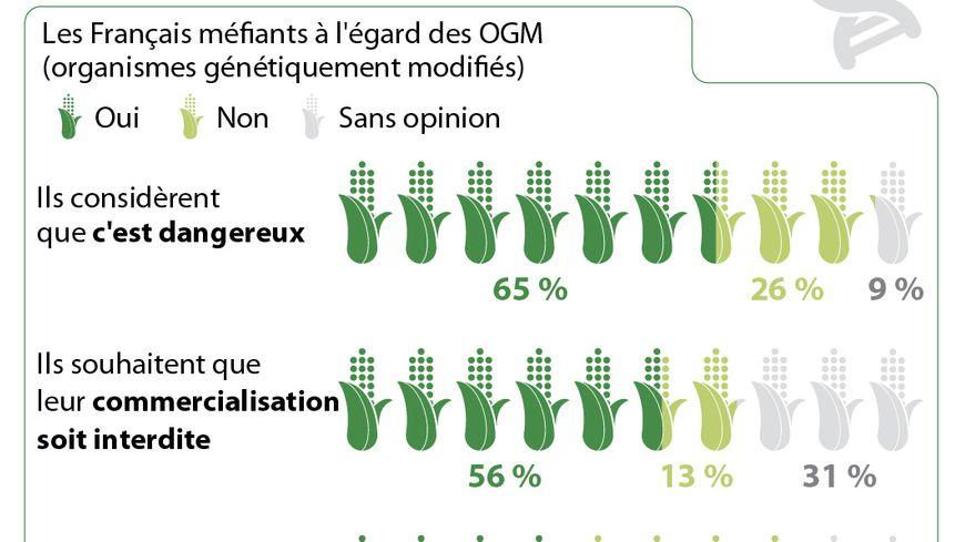 OGM : les Français méfiants