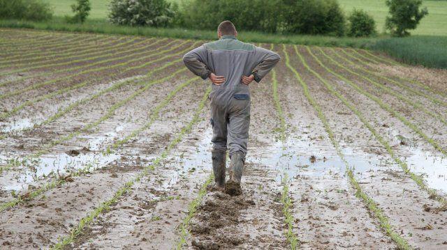 Le nombre de suicides chez les agriculteurs est croissant