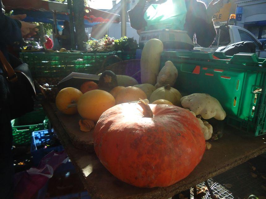 Marché primeurs fruits légumes courges citrouilles potirons Calvados Bayeux - Radio France
