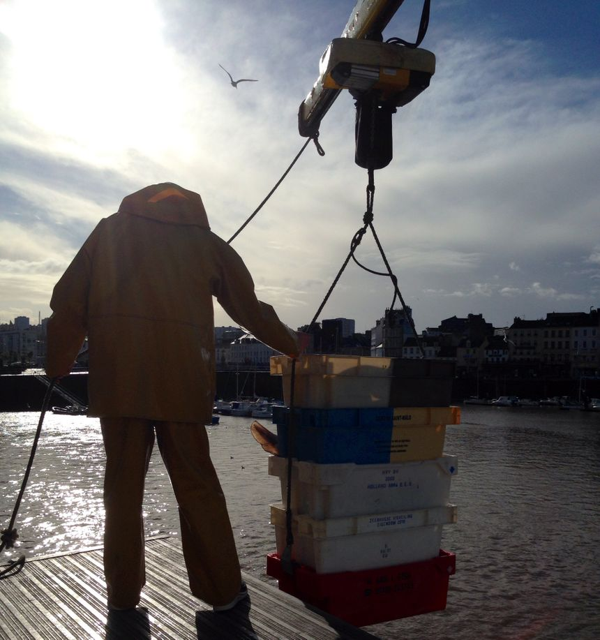 La débarque du bateau L'Albatros sur le port de Cherbourg - Radio France