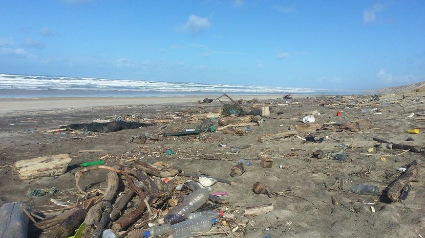 Des plages transformées en déchetteries