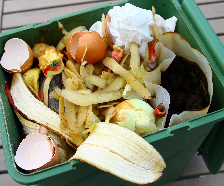 déchets détritus poubelle