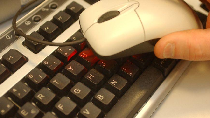 souris et clavier d'ordinateur Microsoft