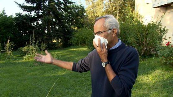 En augmentation constante, les allergies touchent aujourd'hui 30% des français contre à peine 3% en 1960
