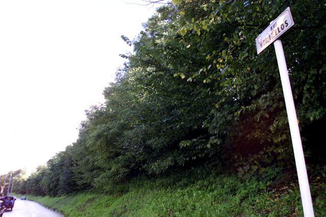 C'est derrière ce talus que le drame s'est déroulé, rue Venizelos à Montigny-lès-Metz.