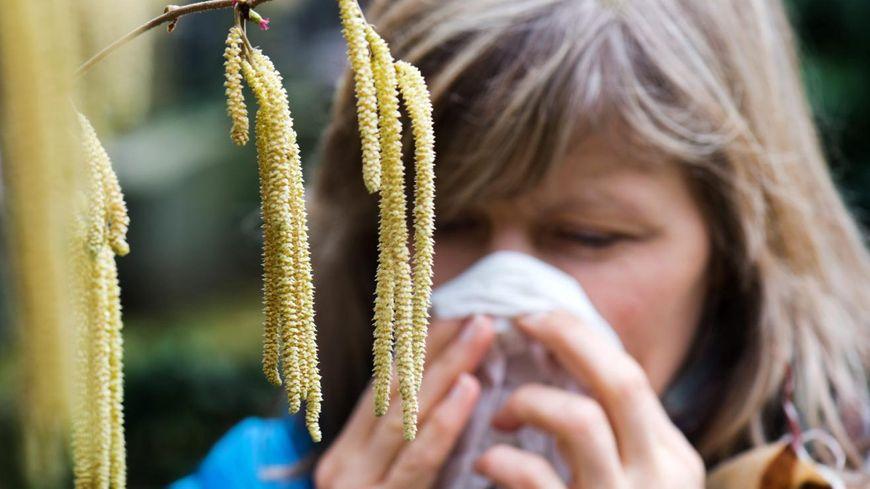 Allergique au pollen (illustration)