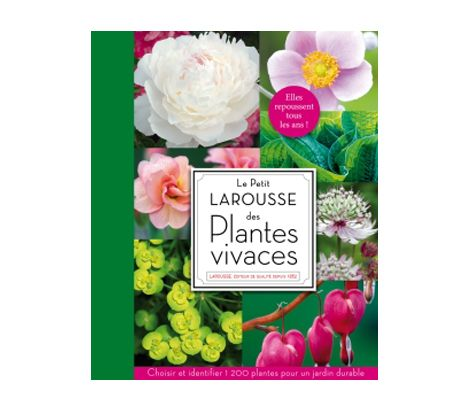Le Petit Larousse des plantes vivaces - Larousse