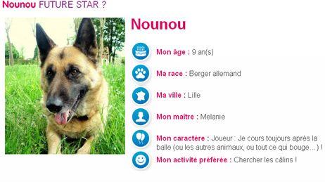 Nounou, chien ch'ti, nouvelle égérie de la Française des Jeux (capture d'écran).