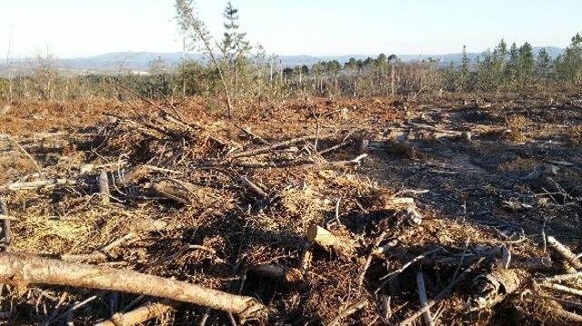 L'exploitation de la forêt à Sanilhac