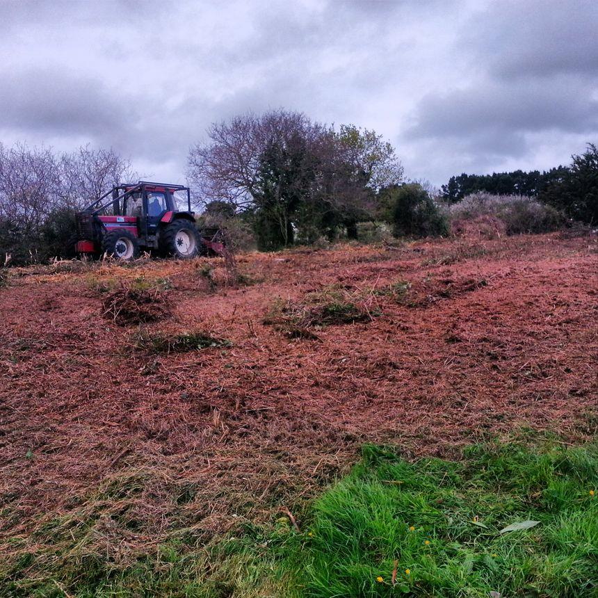Un tracteur équipé d'une débroussailleuse est également passé sur le terrain privé qui jouxte l'aire de repos - Radio France
