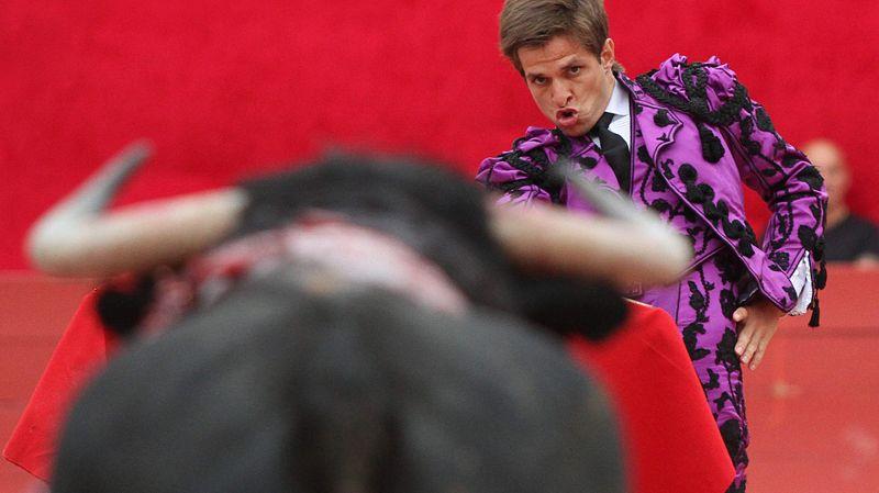 """El Juli et """"Velero"""", taureau grâcié lors de la Feria du Riz à Arles en 2013"""