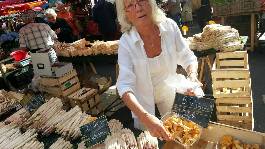 girolle marché Perigueux