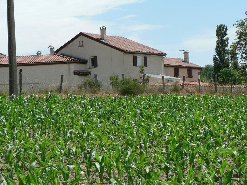 agriculture pesticides  - Radio France