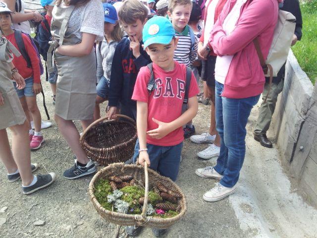 Les élèves de CP de l'école La Salle d'Annecy-le-Vieux ont goûté aux plantes de montagne du chef Marc Veyrat. - Radio France