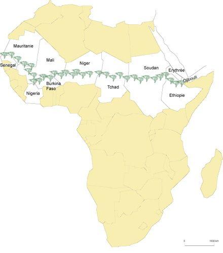 La Grande Muraille Verte, 7700 km à travers 11 pays d'Afrique