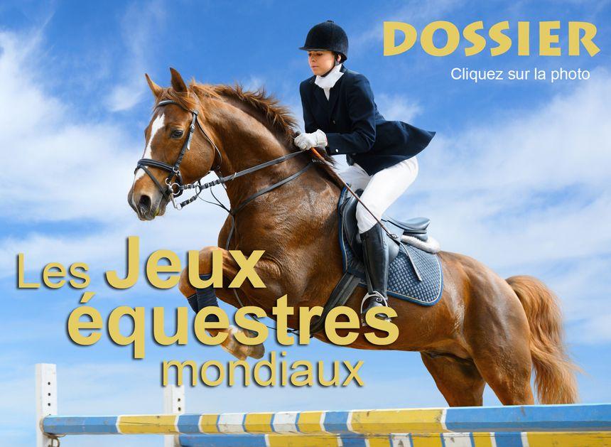 DOSSIER | Les Jeux équestres mondiaux | infographie - Eric Turpin - Radio France