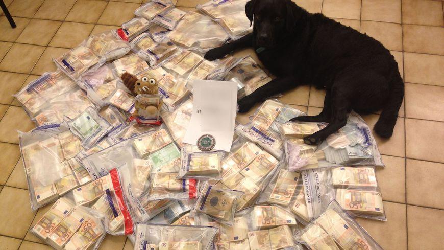 Le 12 mars 2014 ce chien des douanes permet de découvrir 1,1 millions d'euros dans une voiture sur l'A43