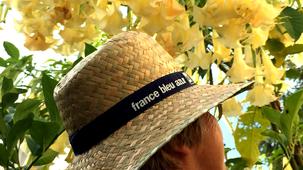 Les Experts Jardin de France Bleu Azur