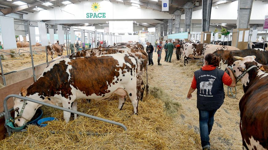 Les syndicats agricoles ne bloqueront pas les acc s du for Salon international du tourisme rennes